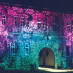 Darstellung diverser Lichtspiele, hier: Blätter in pink und grün.